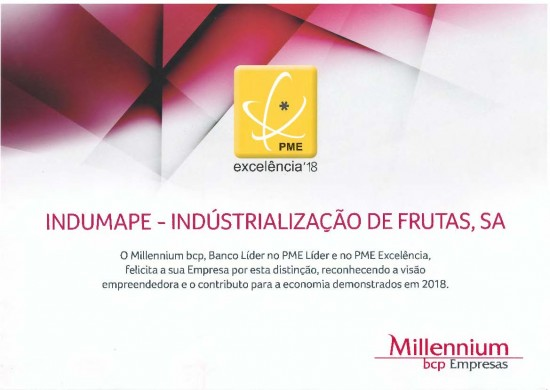 Indumape distinguished with PME Excellence status 2018
