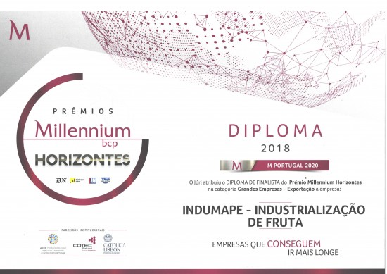 Indumape - Export Finalist of Millennium Horizon prizes